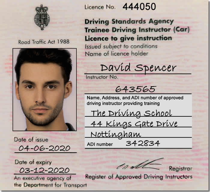 Trainee Driving Instructor Licence