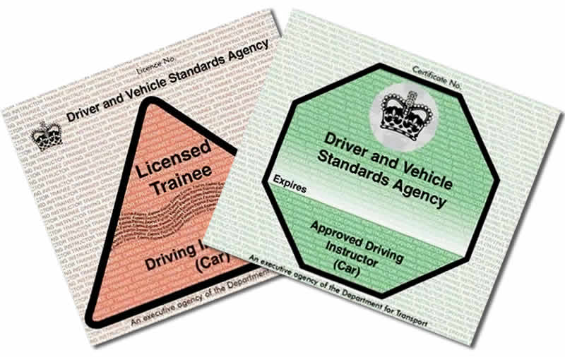 Trainee driving instructor licence and fully qualified driving instructor licence